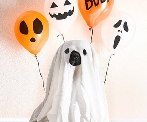 Halloween, ghost, and dog image