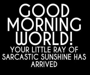 sarcasm, sunshine, and quotes image