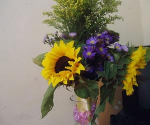 flor, girasoles, and flores image