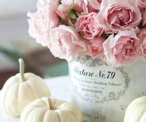 flowers, pink, and autumn image