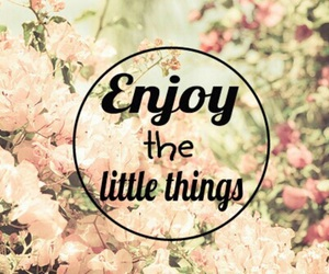 enjoy, quote, and flowers image