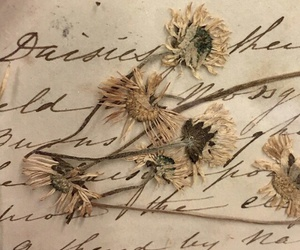 Letter, vintage, and memory image