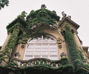 green, house, and vintage image