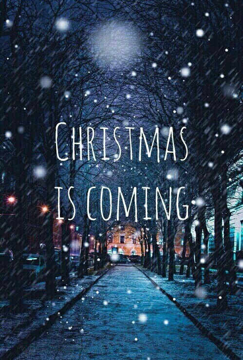 Christmas Is Almost Here Quotes.Image About Tumblr In Christmas By Ri Na
