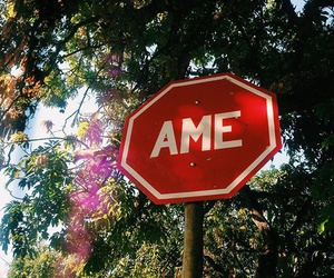 ame and ​amor image