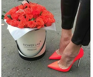 rose, flowers, and heels image