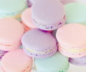pastel, food, and macaroons image