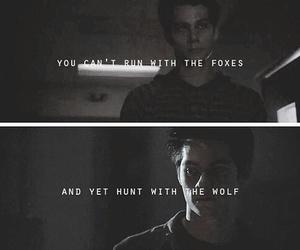 teen wolf and maze runner image