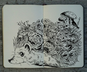 art, drawing, and hedgehog image
