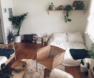 room, home, and plants image