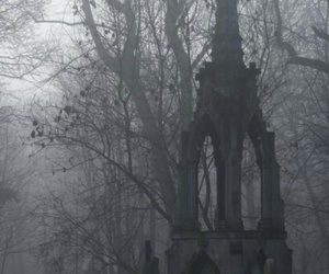 beauty, forest, and gothic image