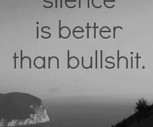 silence, bullshit, and quote image