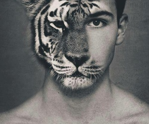 tiger, boy, and man image