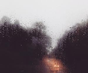 autumn and rainy day image