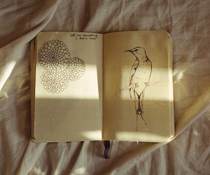 bird, book, and drawing image