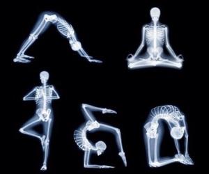 yoga and skeleton image