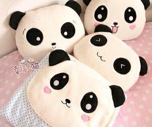 panda, cute, and kawaii image