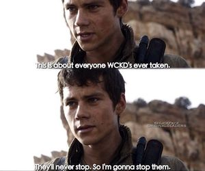 thomas, the scorch trials, and dylan o'brien image