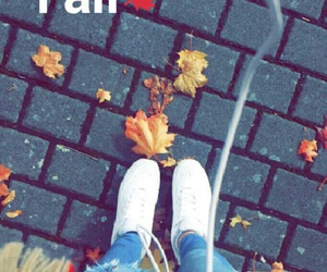 fall, fancy, and music image