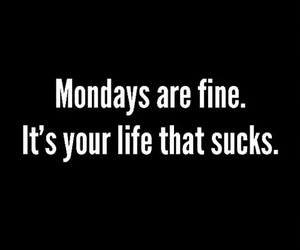 monday, life, and fine image
