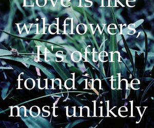 flowers, love, and grass image