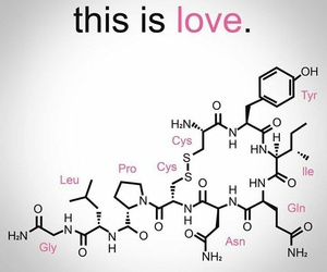 love and chemistry image
