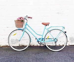 blue, bike, and flowers image