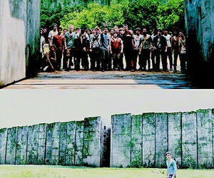 book, thomas, and the maze runner image