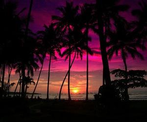 beach, sunset, and summer image