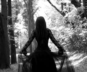 black and white, gothic, and forest image