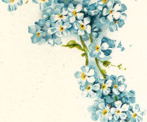 ephemera, illustration, and forget-me-nots image