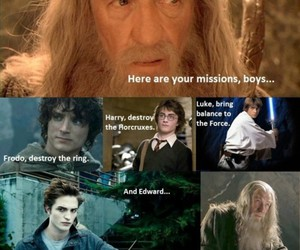 harry potter, funny, and twilight image