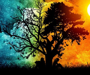 tree, night, and day image