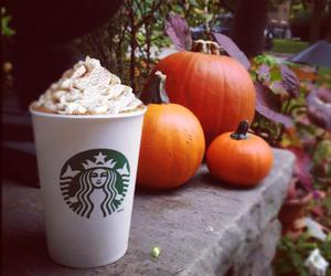 starbucks, pumpkin, and autumn image