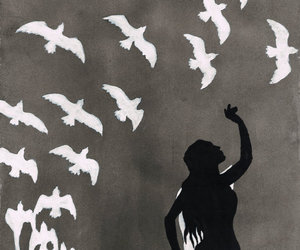 birds, silhouette, and night circus image