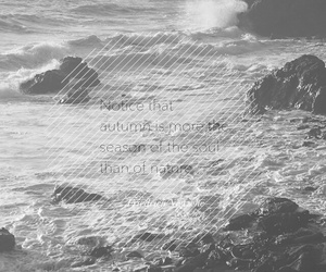 sea, black and white, and nature image