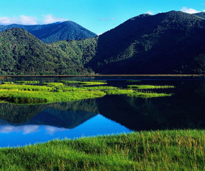hike in new zealand image