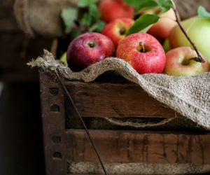 apple, autumn, and fruit image
