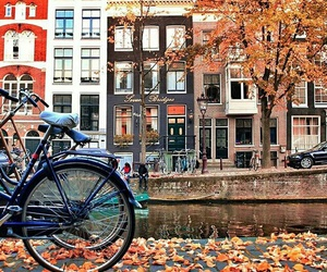 amsterdam, autumn, and cozy image