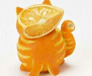 cat, food art, and orange image
