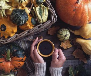 autumn, coffee, and gourds image