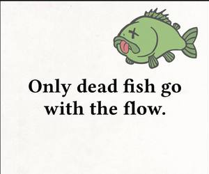 dead, fish, and flow image