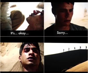 books, the scorch trials, and cry image