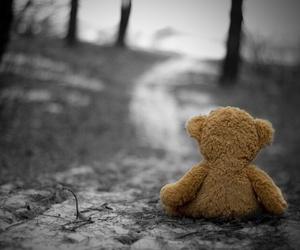 alone, bear, and sad image