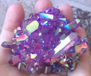 roxo and purple image
