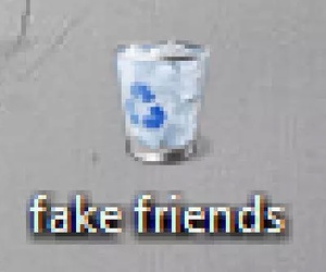 fake, friends, and fake friends image