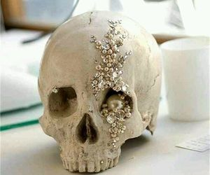 skull and pearls image
