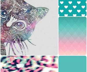cat, wild, and fondos image