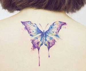 butterfly, colorful, and perfect image