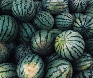 watermelon, green, and tropical image